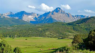 Photograph - Elk Below Mount Sneffels 2 by Dan Miller