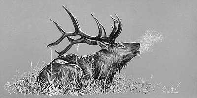 Realism Photograph - Elk Bugle Bw by Aaron Spong