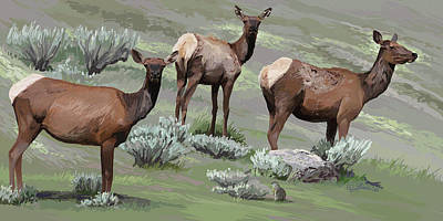 Digital Art - Elk Cows Trio by Pam Little