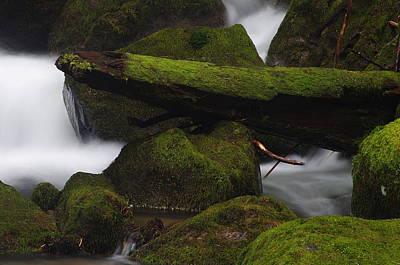 Photograph - Elk Creek Detail 2 by Ken Dietz