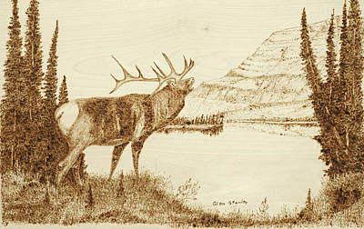 Pyrography Mixed Media - Elk by Glen Stanley