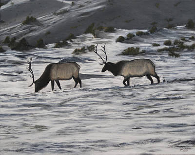 Painting - Elk In Snow by Sara Stevenson