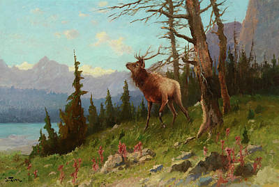 Yosemite Valley Painting - Elk In The Mountains by John Fery