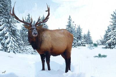 Wall Mounting Painting - Elk In The Snow Oil Painting Canvas Print by Peter Nowell