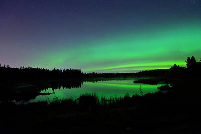 Photograph - Elk Island Aurora Reflections by Dan Jurak