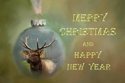 Photograph - Elk Ornament Christmas Greeting Card by Phyllis Taylor