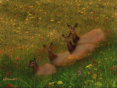 Digital Art - Elk Resting Amoung Wildflowers by Joan Scarbrough