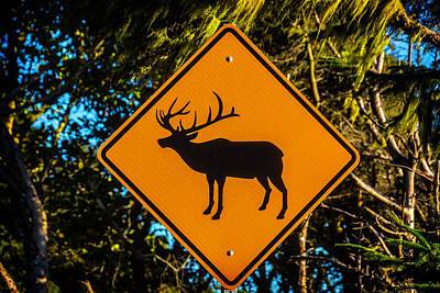 Photograph - Elk Sign by Garry Gay