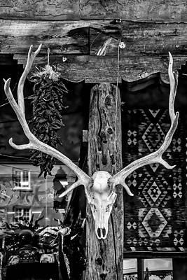 Elk Skull In Black And White Art Print
