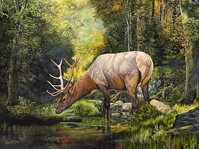 Painting - Elk Study by Robert May