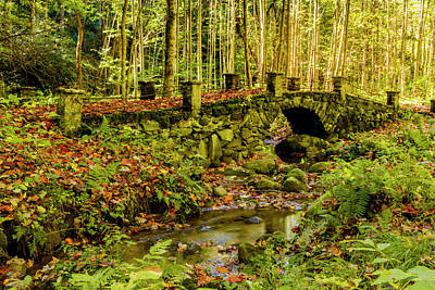 Photograph - Elkmount Troll Bridge In The Smokie Mountains by Teri Virbickis