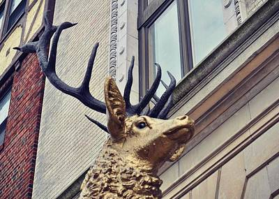 Photograph - Elks Club by JAMART Photography