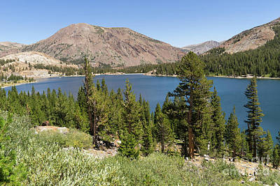 Ellery Lake Tioga Pass Yosemite California Dsc04314 Art Print by Wingsdomain Art and Photography