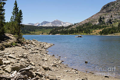 Ellery Lake Tioga Pass Yosemite California Dsc04318 Art Print by Wingsdomain Art and Photography