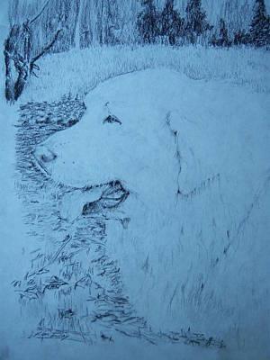 Ellie Art Print by Ken Day