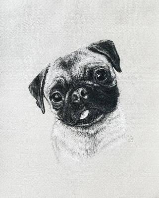 Drawing - Ellie by Risa Kent