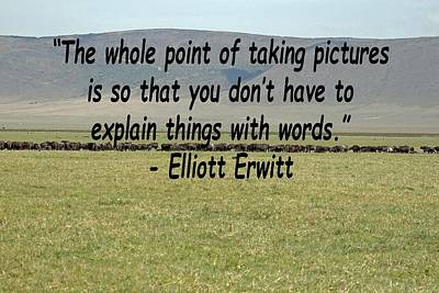 Photograph - Elliott Erwitt Quote by Tony Murtagh