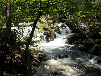 Photograph - Ellis Falls In Andover Maine by Catherine Gagne