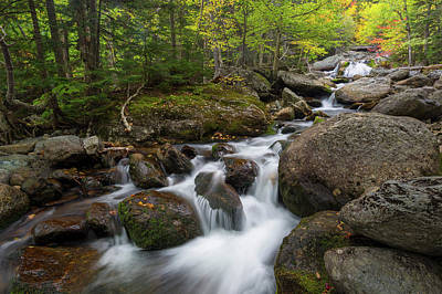 Photograph - Ellis River New Hampshire by Bill Wakeley