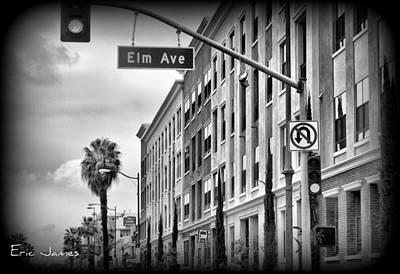 Eric Decker Photograph - Elm  by Eric Decker