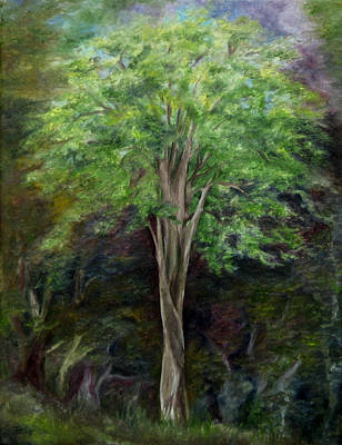 Painting - Elm Tree by FT McKinstry