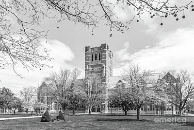 Elm Photograph - Elms College  by University Icons