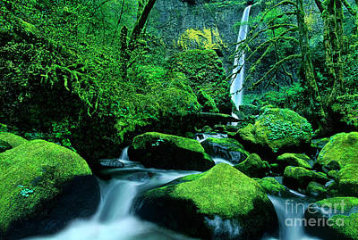 Photograph - Elowah Falls 3 Columbia River Gorge National Scenic Area Oregon by Dave Welling