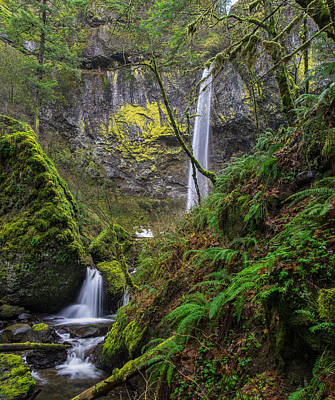 Photograph - Columbia Gorge Elowah Falls Oergon by Rick Dunnuck