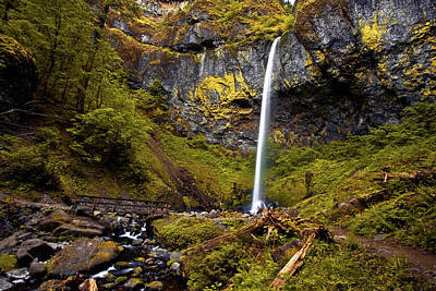 Photograph - Elowah Falls Oregon by Hans Franchesco