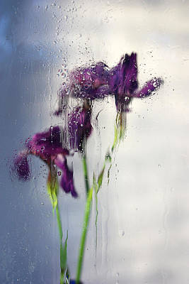 Photograph - Elusive Dreams by Victor Kovchin