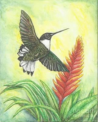 Elusive Inca Art Print by Sue Bonnar