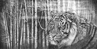 Drawing - Elusive Nature by Peter Williams