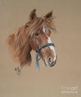Painting - Elvis At The Morgan Horse Ranch Of Prns by Paul Miller