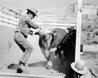 Photograph - Elvis With Bull by Bob Bradshaw