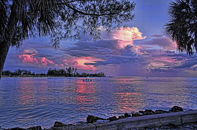 Photograph - Elysian Fields by HH Photography of Florida