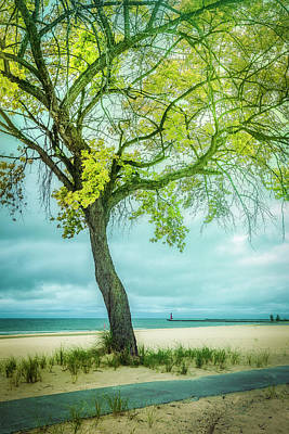 Muskegon Lighthouse Wall Art - Photograph - Embraced By Spring by Debra and Dave Vanderlaan