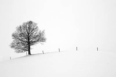 Photograph - Embracing Winter by Dick Pratt