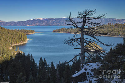 Photograph - Emerald Bay Color by Mitch Shindelbower