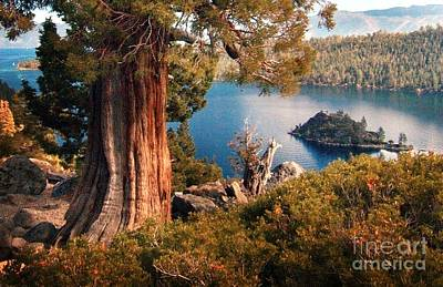 Island Lake Tahoe Photograph - Emerald Bay Overlook by Norman  Andrus