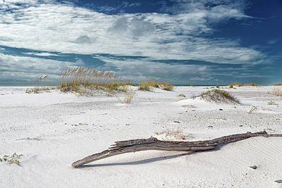 Photograph - Emerald Coast Beauty by Victor Culpepper