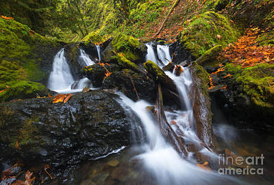 Photograph - Emerald Falls Autumn by Mike Dawson