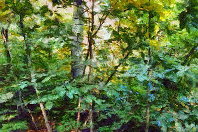Photograph - Emerald Forest Impression by Ann Powell