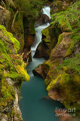 Photograph - Emerald Green Avalanche Creek by Adam Jewell