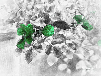 Emerald Green Of Ireland Art Print