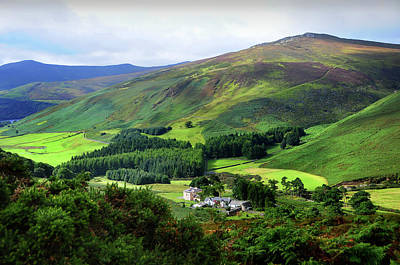Photograph - Emerald Hills. Wicklow. Ireland by Jenny Rainbow
