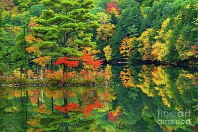 Photograph - Emerald Lake  by Benedict Heekwan Yang
