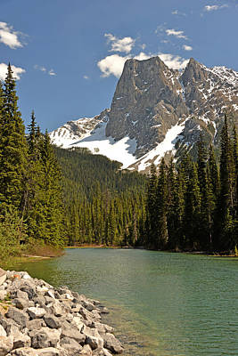 Photograph - Emerald Lake Vista by Ginny Barklow