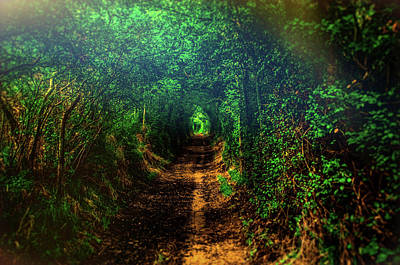 Greenman Photograph - Emerald Path. A Magical Fine Art Photographic Print by Lee Thornberry