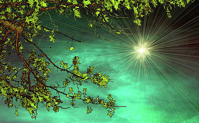 Emerald Sky Art Print by Tom York Images