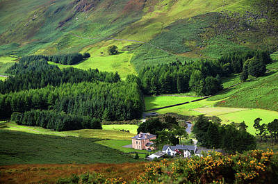 Photograph - Emerald Valley. Wicklow. Ireland by Jenny Rainbow